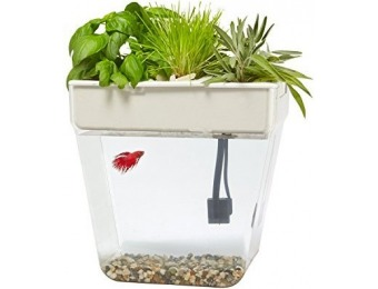 43% off Back to the Roots Water Garden Fish Tank, Premium