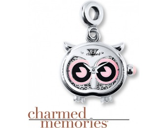 $70 off Charmed Memories Timebeads Stainless Steel Owl Charm