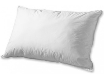 37% off Overfilled Down Alternative Pillows - Set of 2, Standard