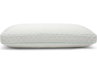 30% off Sealy Memory Foam Cluster Pillow