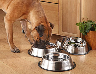 80% off 2-Pack Cesar Millan Stainless Steel Pet Bowls w/ BH749