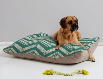 50% off Select Artist Series Pet Beds, 981 Items