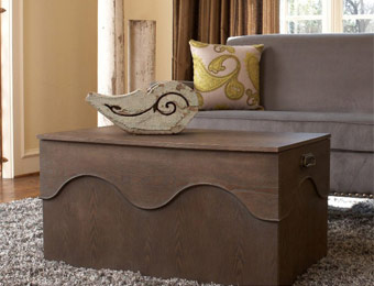 $284 off angelo:HOME Kara Trunk Coffee Table