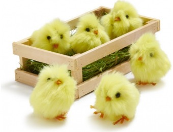 77% off Baby Chick Scatter