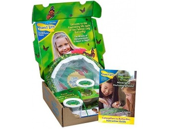 74% off Original Butterfly Garden with 2 Live Cups of Caterpillars