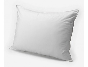 71% off Eddie Bauer Superior Dual-Chamber Pillow