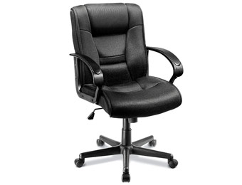 $53 off Ruzzi Mid-Back Mesh Computer Chair