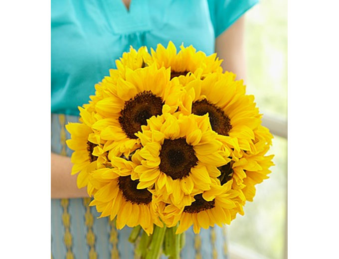 10 Stem Sunflower Bouquet