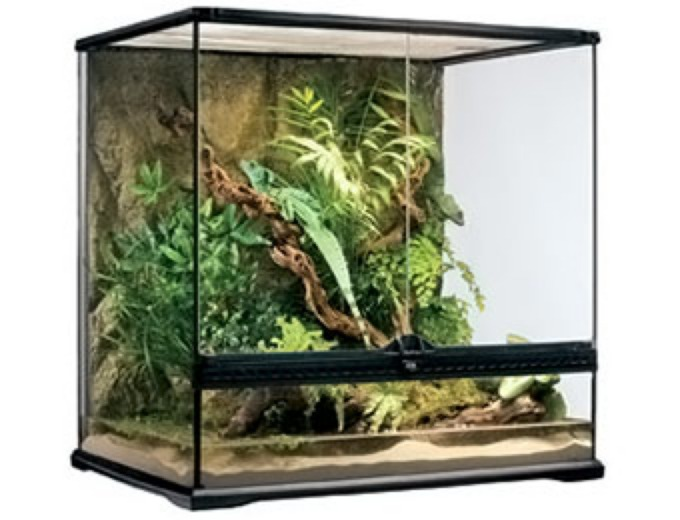 Large Tall Exo-Terra Glass Terrarium