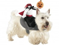 50% off Boots and Barkley Headless Horseman Rider Pet Costume