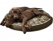 "74% off P.L.A.Y. Camouflage Dog Bed 42""- Large"