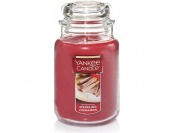 52% off Yankee Candle Company Cinnamon Large Jar Candle