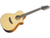 61% off Breedlove Atlas Studio C250/SMe-12 12-String Guitar