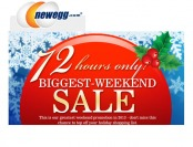 Newegg Biggest Weekend Sale of 2013 - 72 Hours Only