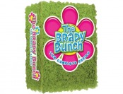 66% off Brady Bunch: The Complete Series DVD Gift Set