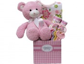 93% off Great Arrivals Baby Girl Gift Basket
