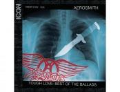 75% off Icon: Aerosmith (Audio CD)