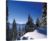 $482 off Art Wall Lake Tahoe in Winter Gallery Wrapped Canvas