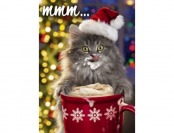 77% off Avanti Christmas Cards, Kitten and Cocoa, 20-Count