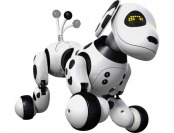 40% off Zoomer 2.0 Dalmatian - White/Black
