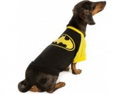 30% off DC Comics Pet Halloween Batman Pet T-Shirt
