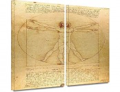 "92% off Leonardo DaVinci 'Vitruvian Man' Gallery Canvas, 32""x48"""
