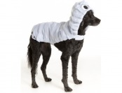 67% off Thrills Chills Halloween Mummy Pet Costume